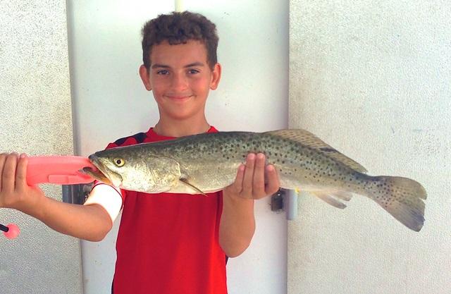 inshore-fishing-trout-tampa-bay