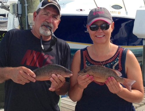Rall Fishing Report