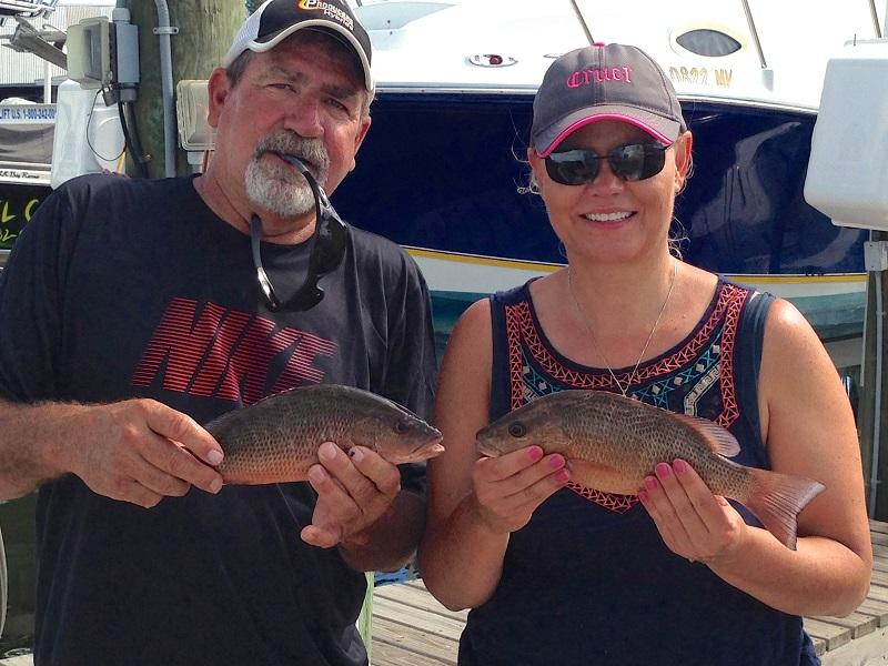mangrove-snapper-fishing-charter