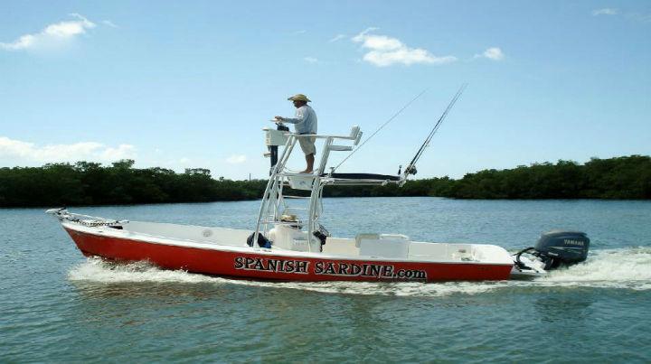 Tampa fishing charters best tampa fishing charters on for Tampa fishing charters