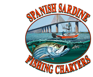 #1 Tampa Bay Fishing Charter – Spanish Sardine Logo