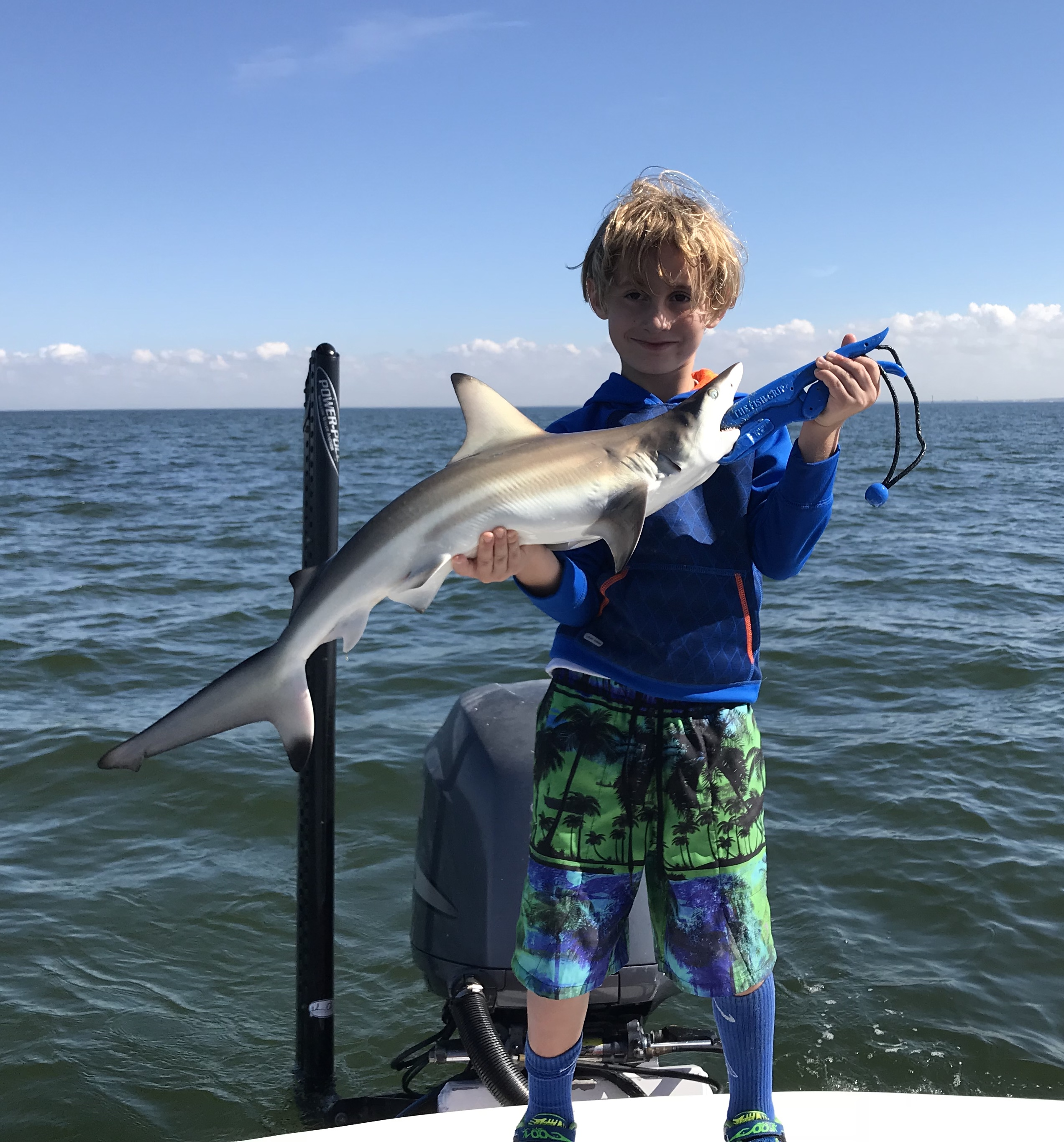 best charter for shark fishing